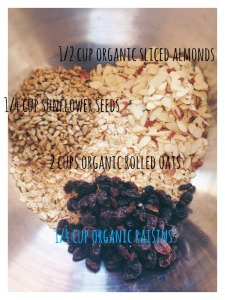 granola measurements
